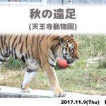 遠足の日 (天王寺動物園)