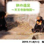 天王寺動物園へ